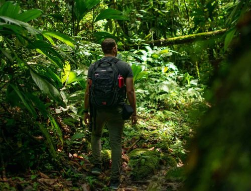 ecotourism