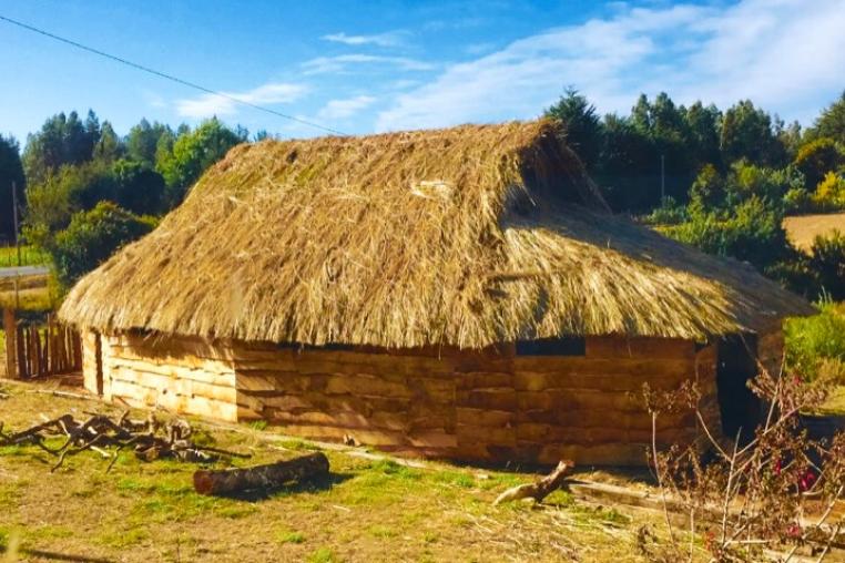 Mapuche Ruka