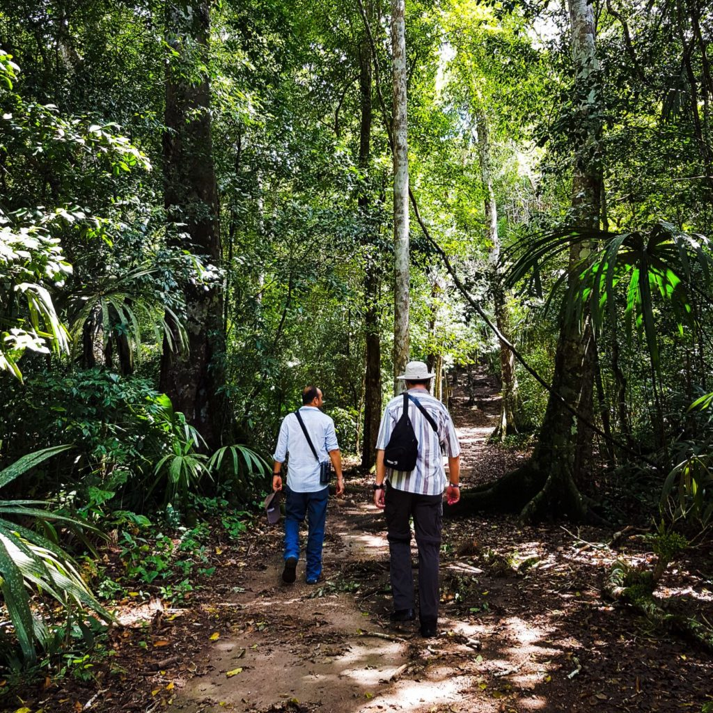 Birding in Protected Areas on Guatemala tour