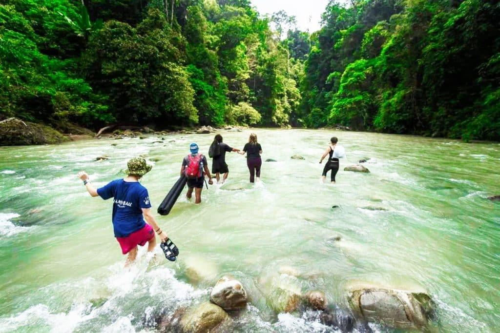 Jungle trekking in Sumatra
