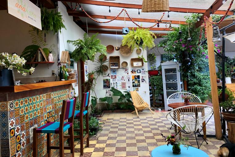 San Cristobal de las Casas businesses