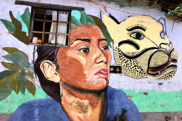 street art, San Cristobal de las Casas
