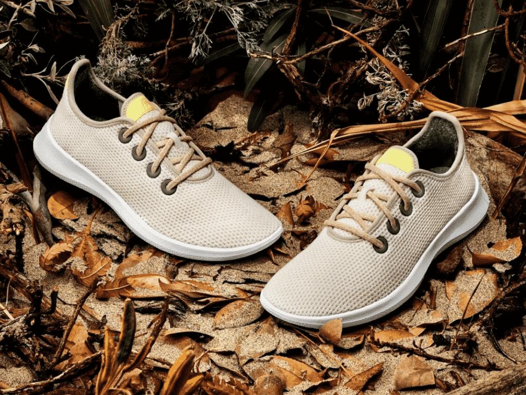 Sustainable sneakers Allbirds
