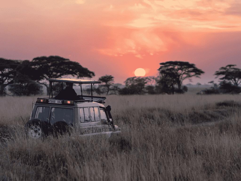 ethical safari parks