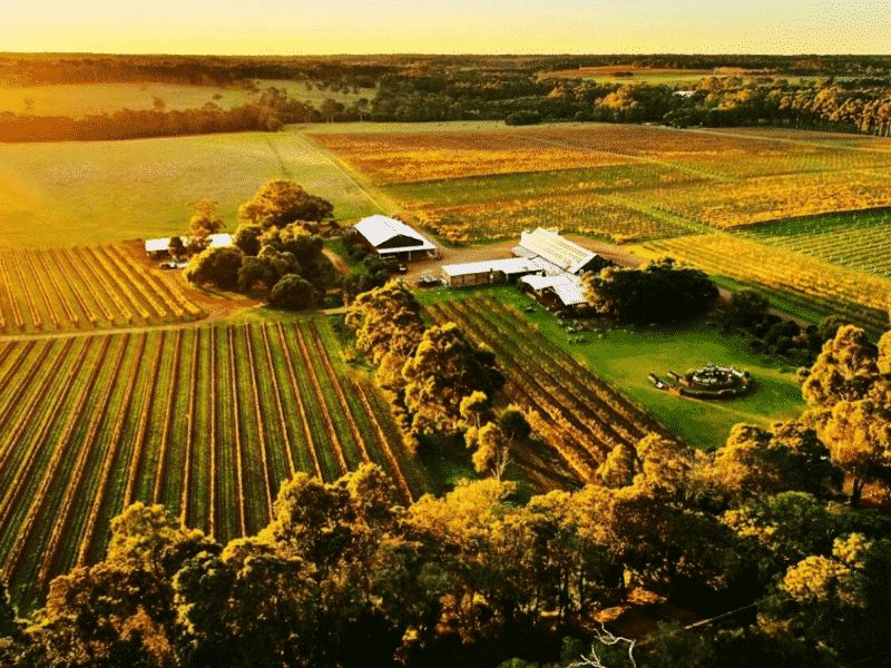 Cullen Wines, Australia