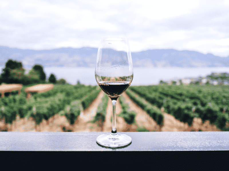 how to find a sustainable winery