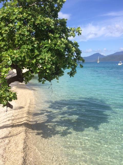 Wildlife Tourism - Tropical Beach